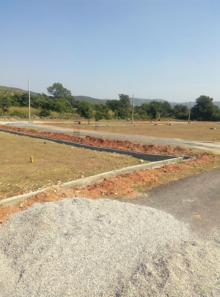 Gupetshwar Ji road RS1325sqft